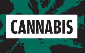 Les vår brosjyre om cannabis her